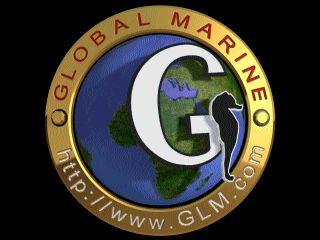 click here to download glmglobe.zip